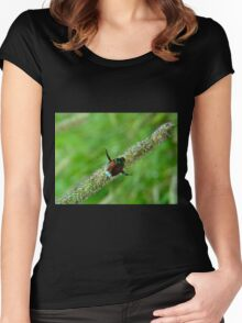 Balancing beetle Women's Fitted Scoop T-Shirt