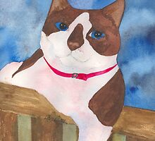 Playful Snowshoe Siamese Kitty by CCallahan