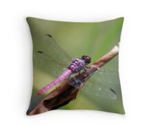 Roseate Skimmer Throw Pillow