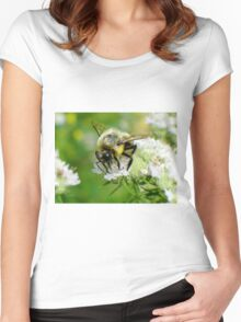 Bumble bee on white flower Women's Fitted Scoop T-Shirt