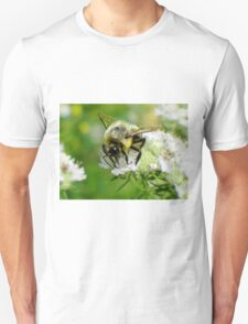 Bumble bee on white flower Unisex T-Shirt