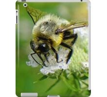 Bumble bee on white flower iPad Case/Skin