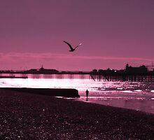 Brighton Pier by Leon Ritchie