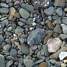 Winthrop Beach Rocks 2 by photosbycoleen