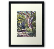 Lake Innes Nature Reserve - paint out Framed Print