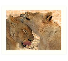 Sisterly affection(So nice to see you again where did you go!) Art Print