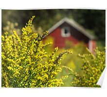 Little Red Shed on the Prairie Poster