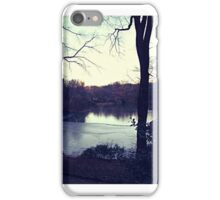 Central Park in the winter iPhone Case/Skin