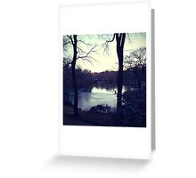 Central Park in the winter Greeting Card