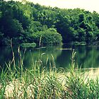Lake in the Evening by ebred