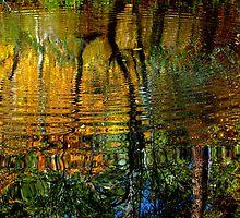 Rippled river by goddessteri211