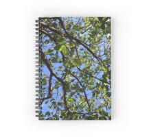 Green Leaves on Blue Spiral Notebook