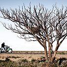 Desolate Highway by JimFilmer