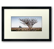 Desolate Highway Framed Print