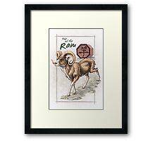 Chinese Zodiac - the Ram Framed Print