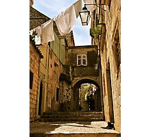 Cat in alley with laundry Photographic Print