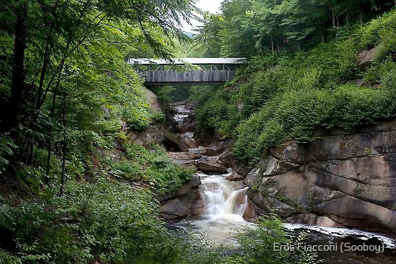 Sentinel Pine Bridge, Franconia Notch SP New Hampshire by Eros Fiacconi (Sooboy)