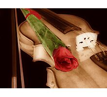 A Violin And  A Rose Photographic Print