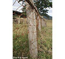 Farm Wooden Fence Line - Queensland Photographic Print