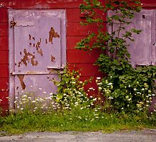THE PURPLE DOOR- Nova Scotia, Canada by Andrianne