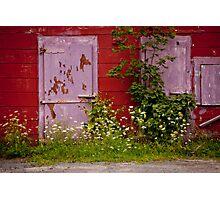 THE PURPLE DOOR- Nova Scotia, Canada Photographic Print