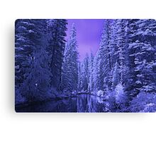 Depths of Winter Canvas Print