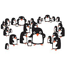 Many penguins Photographic Print