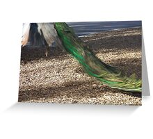 Dear Peacock in the tree Greeting Card