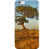DogRocks ~ Geelong Vic iPhone Case/Skin