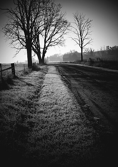A frosty morning by jammingene
