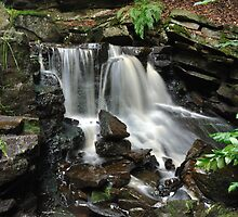 Waterfall by Andrew Cryer