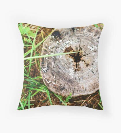 Cut Off- tree stump with lichen in grass Throw Pillow