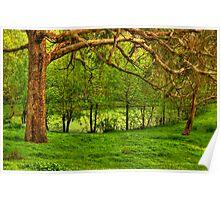 Montsalvat re-visited Poster