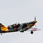 The Dewoitine D.520 by Nick Sage