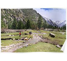 Rakcham valley reserve forest Poster