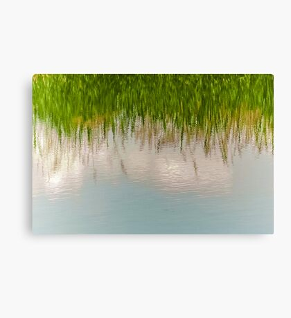 Upside Down or Not? Canvas Print