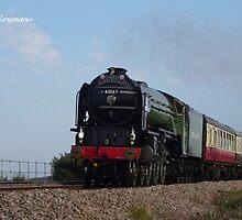 LNER 60163 'Tornado' at Cockwood by Rorymacve