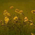 The wild bunch ~yellow~ by LarsvandeGoor