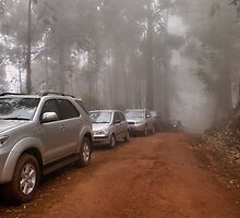 CONVOY IN THE MIST - Limpopo Province South Africa by Magaret Meintjes
