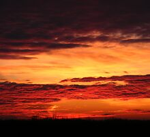 Saskatchewan Sunset of Fire by Elfkin1984