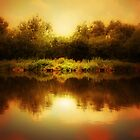 THE FISHING POND by leonie7