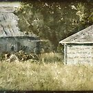 Kansas Tractor Barn by JulieLegg