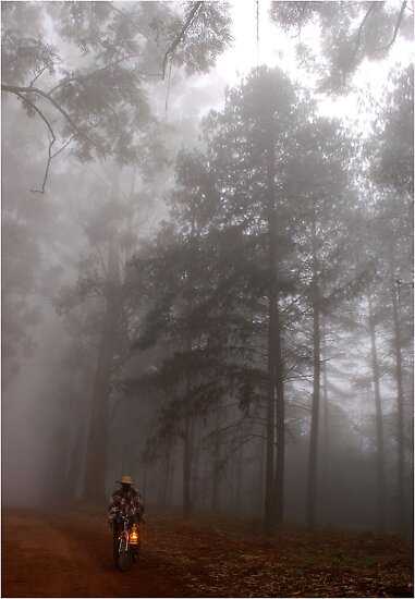 THE MIST, THE BICYCLE MAN AND THE LANTERN by Magaret Meintjes