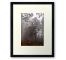 THE MIST, THE BICYCLE MAN AND THE LANTERN Framed Print