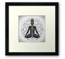 The Geometry of Life Framed Print