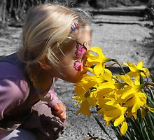 Daffodils by timstathers