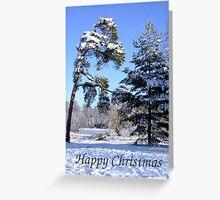Winter Walk - Christmas Card Greeting Card
