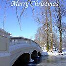 Winter Bridge - Christmas Card by Samantha Higgs