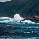 Southern Ocean Surfing by Tony Phillips
