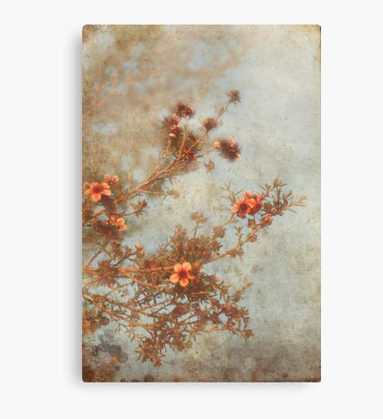 Love Is In Bloom Canvas Print